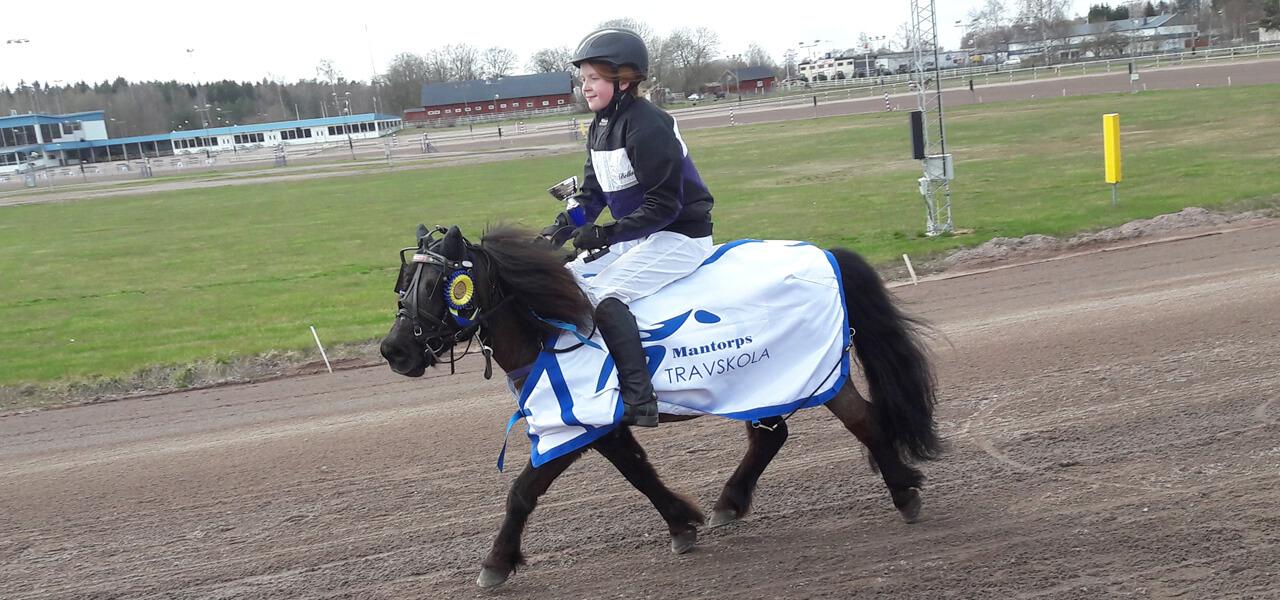 Mantorps Travskola | Våra hästar