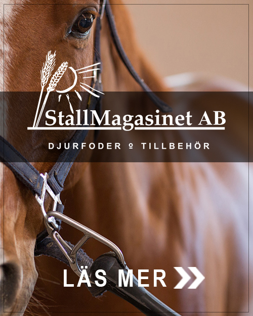 Stallmagasinet Ridsport - Mob
